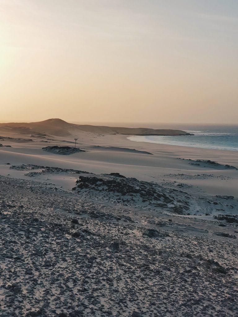 boa vista desert